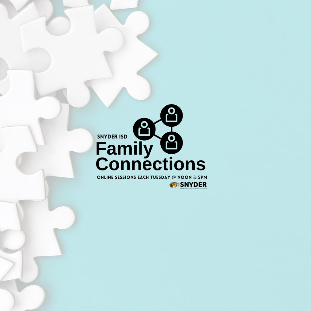 Family Connections: Online Session Information